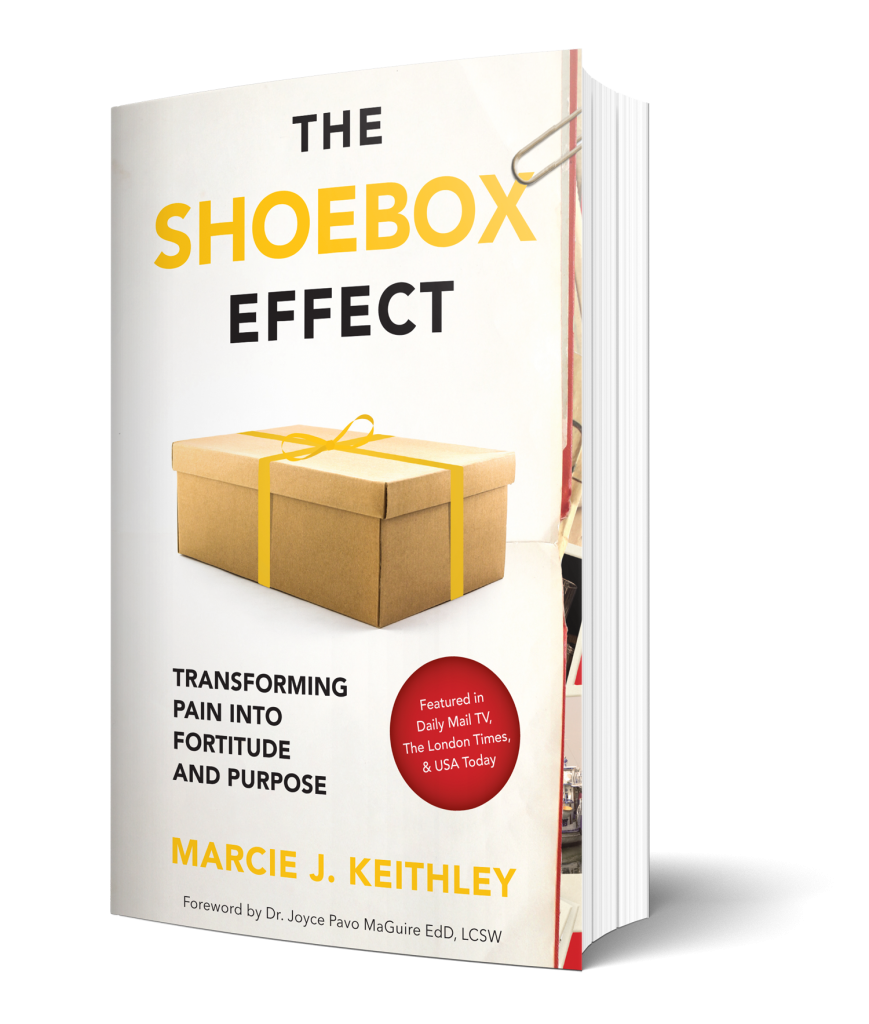 The Shoebox Effect Book Cover